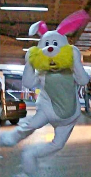 cropDA-bunny-suit